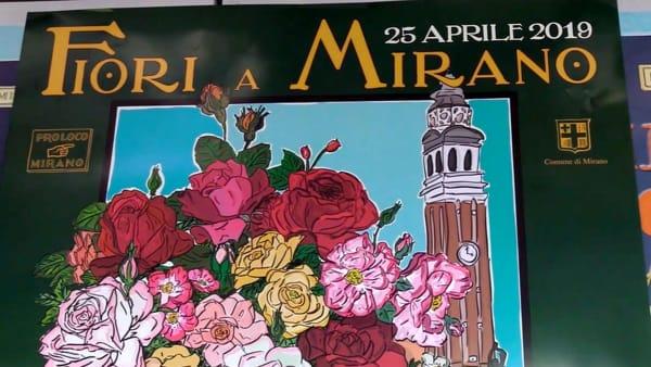 Mirano si riempie di fiori: torna la grande mostra mercato con 120 espositori | VIDEO