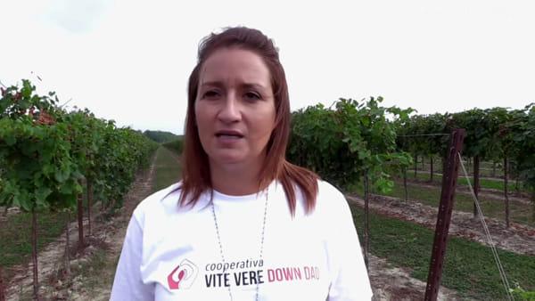 Prima vendemmia per i ragazzi della cooperativa Vite Vere Down Dadi | VIDEO