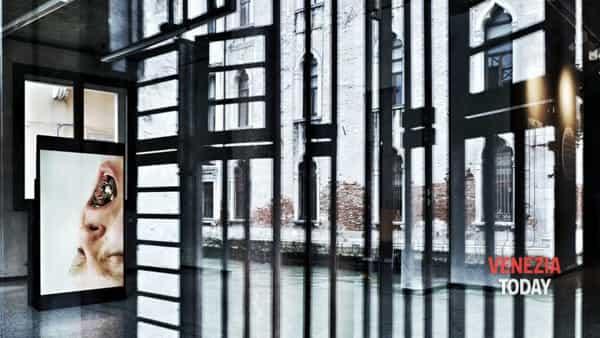 urbanimal | riapre la fondazione masieri a venezia-2